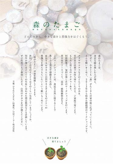 第5回森のたまご(表).jpg
